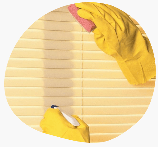 Curtains and Blinds Cleaning Doreen